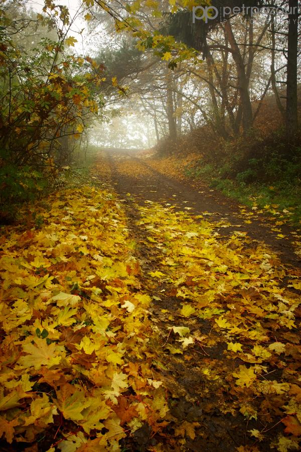 Podzimní cesta na Hazmburk