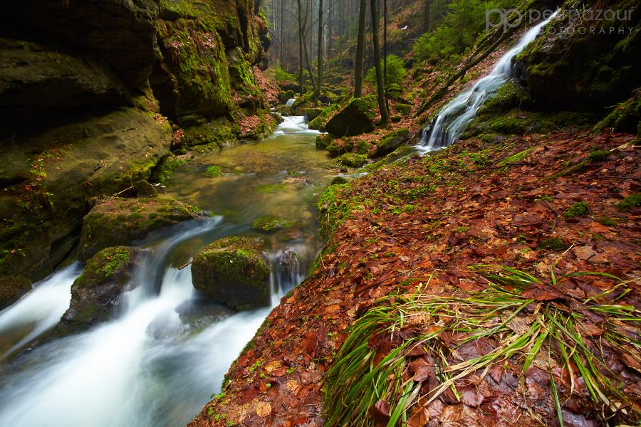 Suchá Kamenice plná jarní dravé vody