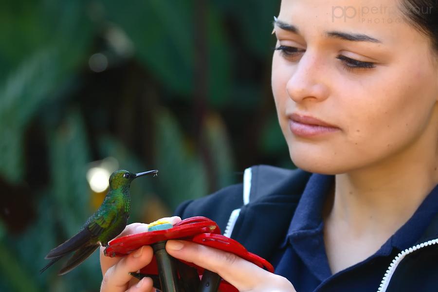 Kolibřík s dívkou