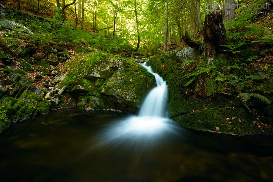 Černohorský potok - podzim začíná