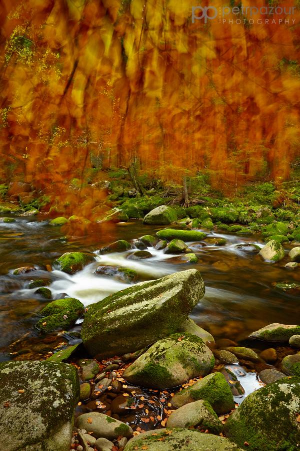 Podzimní Vydra