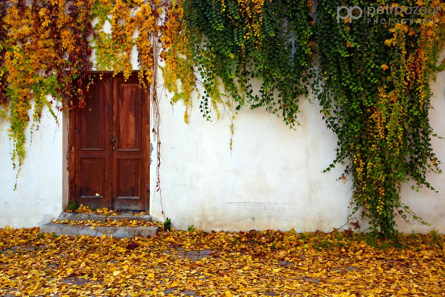 Pražský podzim