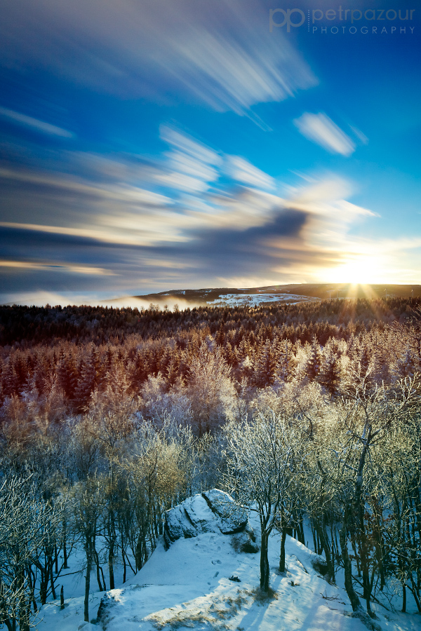 Zimní Jeřabina