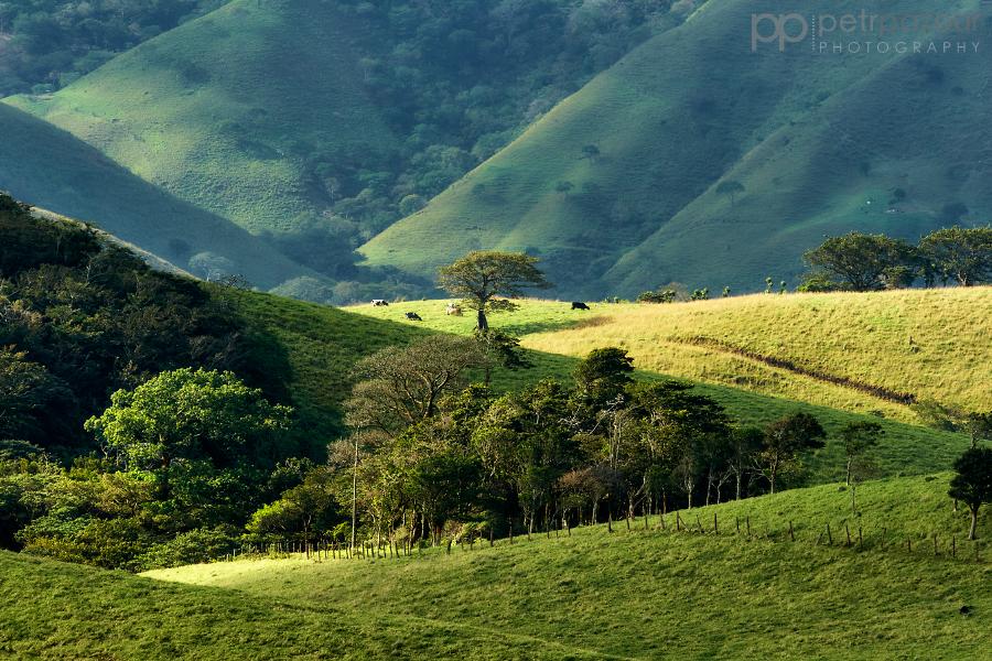 Cestou do Monteverde