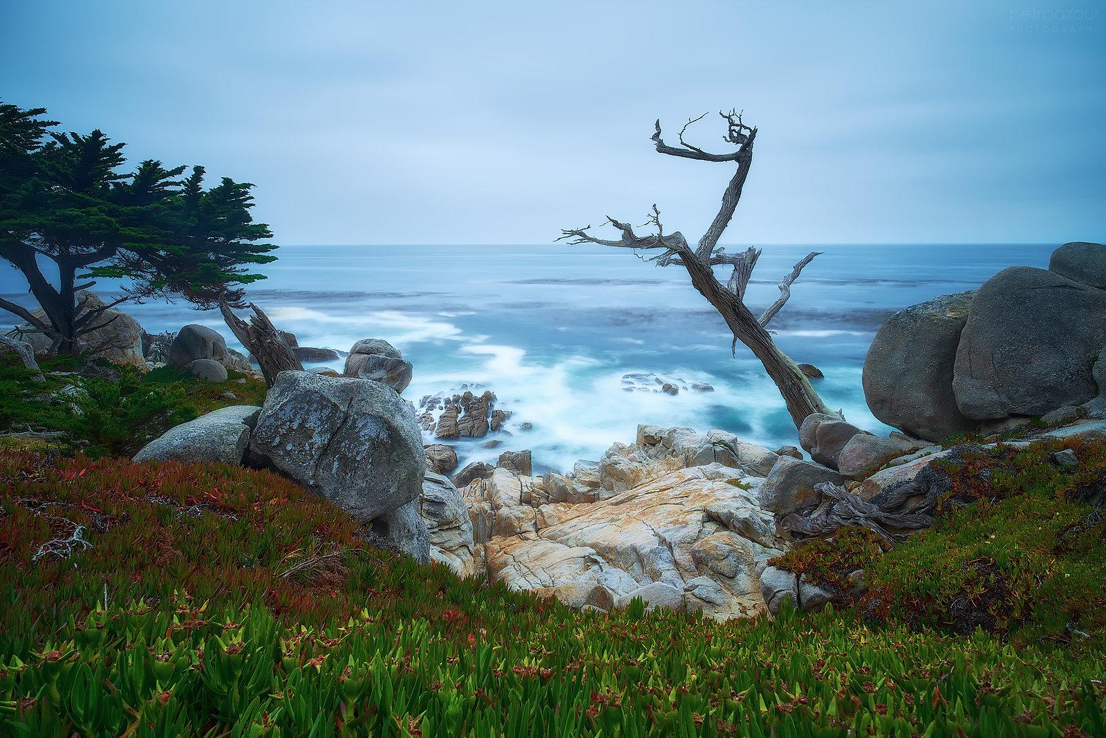 Pacifické pobřeží